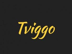 Tviggo Bot