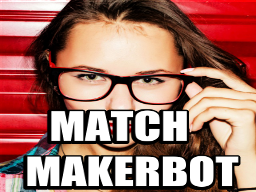 Match Maker Bot